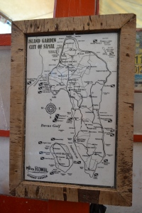 IGACOS map
